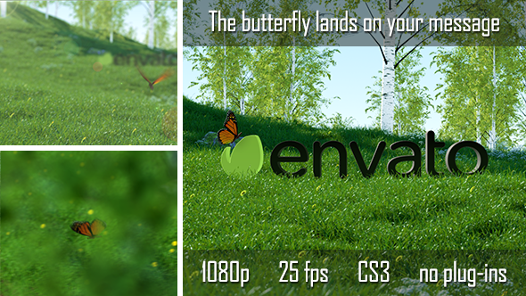 Butterfly Logo Reveal - After Effects Project - PSD KEYS